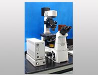 研究级倒置荧光显微镜(Nikon-Ti-S)